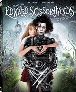 Edward makas elleri, duygusal düzeyde dışlanmış hissetmek için belirgin metafordur.