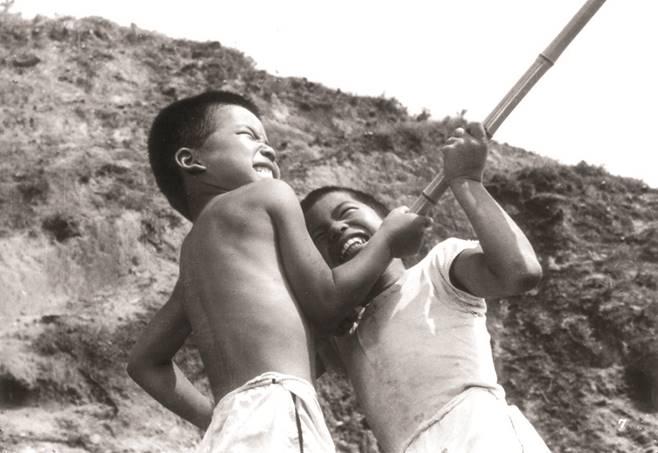 Bir adanın insana verebileceği hiçbir şeyi olamamasına rağmen, karı – koca ve iki çocuktan oluşan bir ailenin kendilerine göre o adadan almak istediği çok şey vardır.