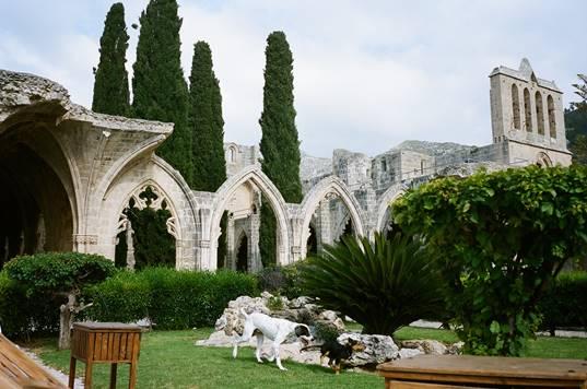 Bellapais Manastırı, Girne-Solda (1198-1359)