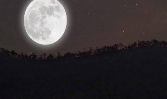 Ay Gözlüm